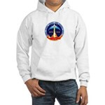 STS-133 Hooded Sweatshirt
