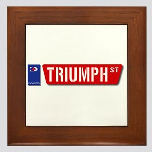Official Dowco Triumph Street Framed Tile