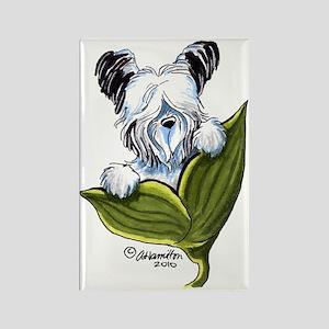 Platinum Skye Terrier Rectangle Magnet