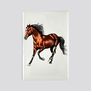 Cantering Bay Horse Rectangle Magnet