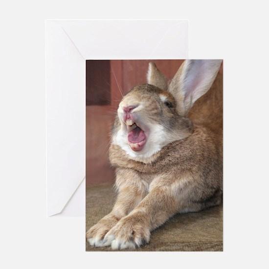 Bunny Yawn Greeting Card