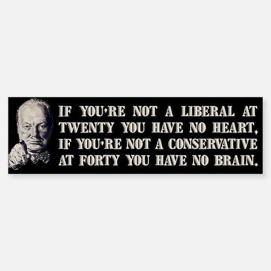 Churchill on Liberals Sticker (Bumper)