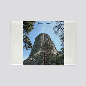 Devils Tower Magnets