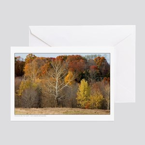 Fall Foliage - rural New York Greeting Cards (Pk o