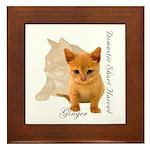 Ginger Cat Kitten Framed Tile