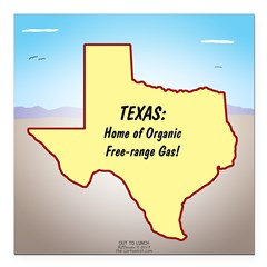 Texas Organic Free-range Square Car Magnet 3