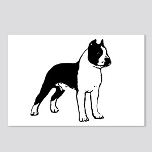 American Staffordshire Terrier Postcards (Package
