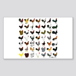 49 Roosters Sticker (Rectangle)