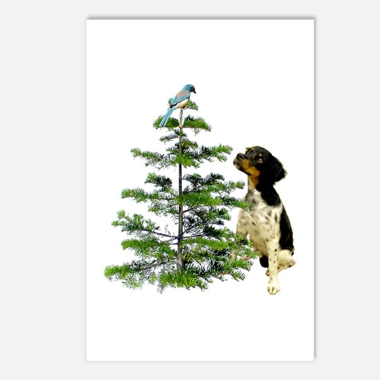 Bird Dog Tree Postcards (Package of 8)