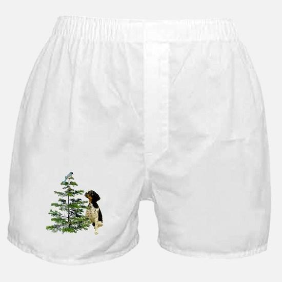Bird Dog Tree Boxer Shorts