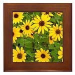Framed Tile - Sunflowers