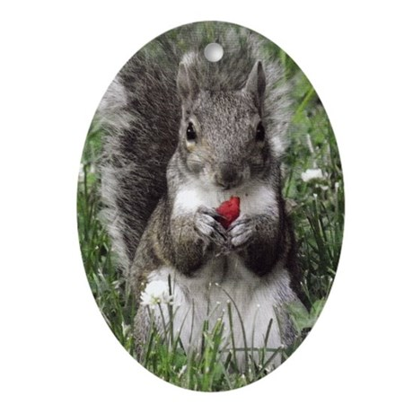 Raspberry Squirrel Ornament (Oval)