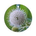 Buttonbush Ornament (Round)