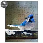 Blue Jay Puzzle