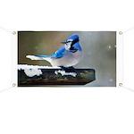 Blue Jay Banner