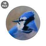 Blue Jay 3.5