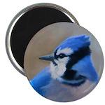Blue Jay 2.25