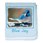 Blue Jay baby blanket