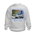 Blue Jay Kids Sweatshirt