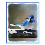 Blue Jay Small Poster