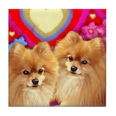 POMERANIAN DOGS LOVE Tile Coaster