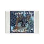 Fox Coat Rectangle Magnet (100 pack)