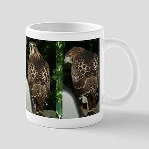 Red-tailed Hawk - 4 views Mug