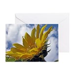 Sunflowers and Sky Greeting Card
