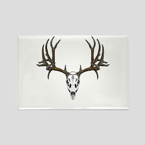 European mount mule deer Rectangle Magnet