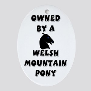 Welsh Mountain Pony Oval Ornament