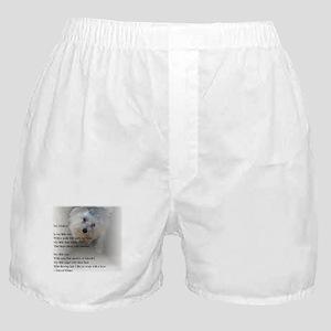 Maltese Poem Boxer Shorts