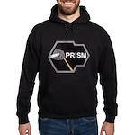 Prism Program Hooded Sweatshirt