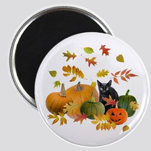 Black Cat Pumpkins Magnet