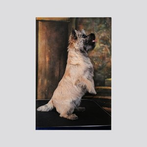 """""""Sitting Pretty"""" Cairn Terrier Rectangle Magnet"""