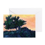 Sunset Torrey Pines Invite Cards (Pk of 10)