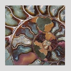 ammonite Tile Coaster