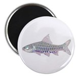 Congo Barb Inverse Line draw Magnets