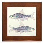 Congo Barb Inverse Line draw Framed Tile