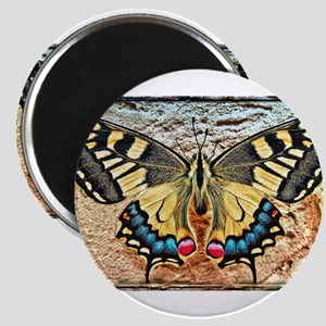 butterfly colorful art design Magnets