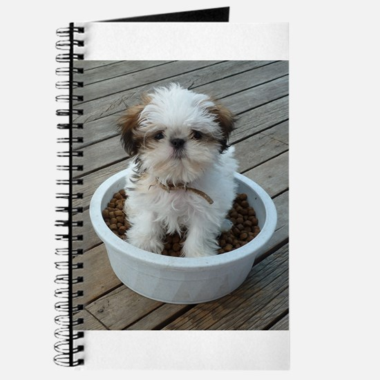 Shih Tzu Puppy Journal