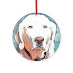 White Labrador Retriever Ornament (Round)