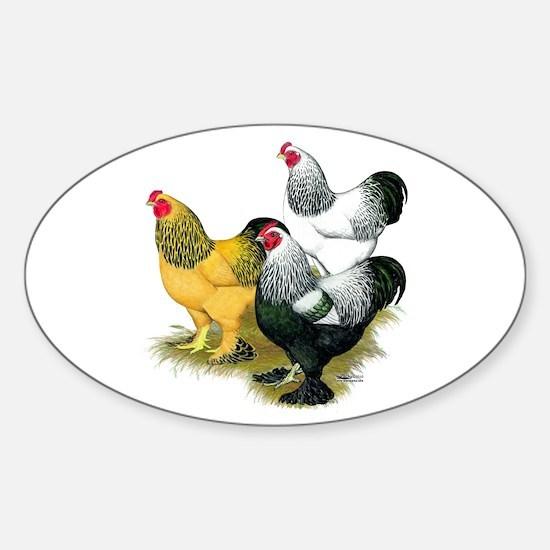 Brahma Rooster Assortment Sticker (Oval)