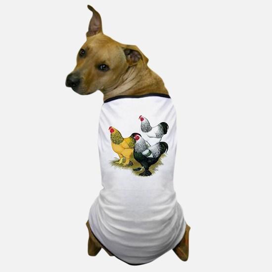 Brahma Rooster Assortment Dog T-Shirt