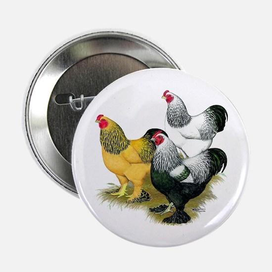"""Brahma Rooster Assortment 2.25"""" Button"""