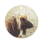 Ornament, Afghanhound-Lady