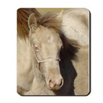 Mousepad Champagne Filly