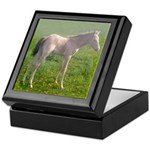 Keepsake Box, ClassicCreamChampagneTWH Filly