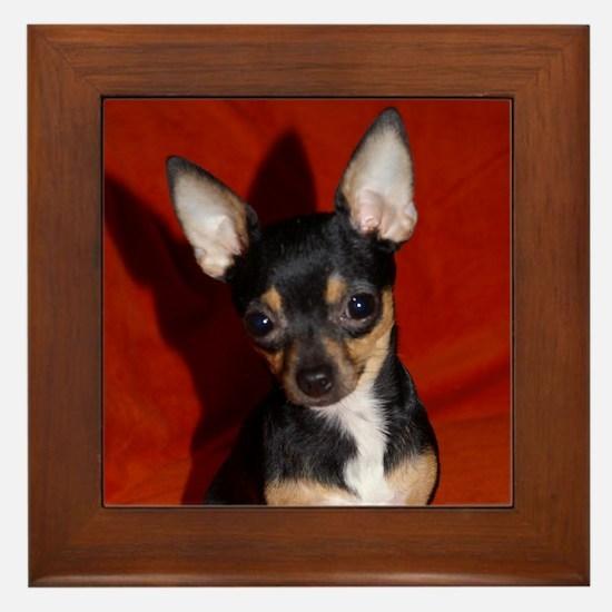 Cute Toy fox terriers Framed Tile