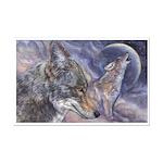 Coyote Mini Poster Print