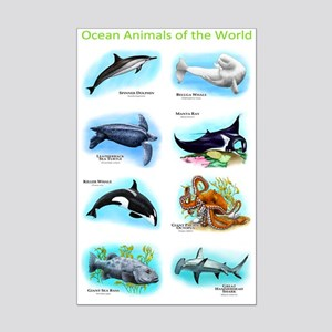 Ocean Animals of the World Mini Poster Print